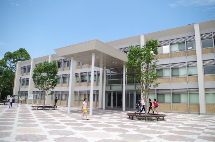 福岡 教育 大学