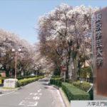 【全国対応】東京学芸大学 小論文 対策講座 【模範解答2015】