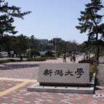 【全国対応】 新潟大学 法学部 小論文 対策講座